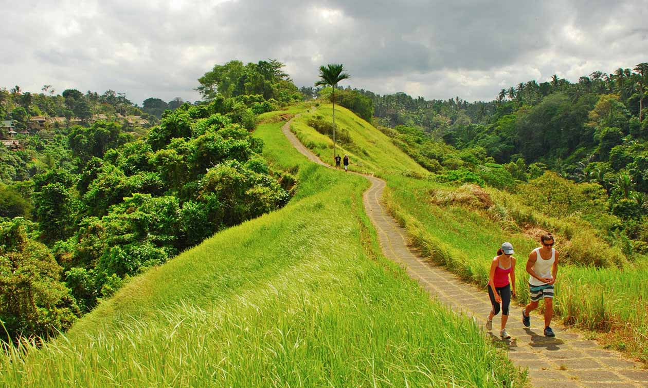 tourist-trail-in-bali