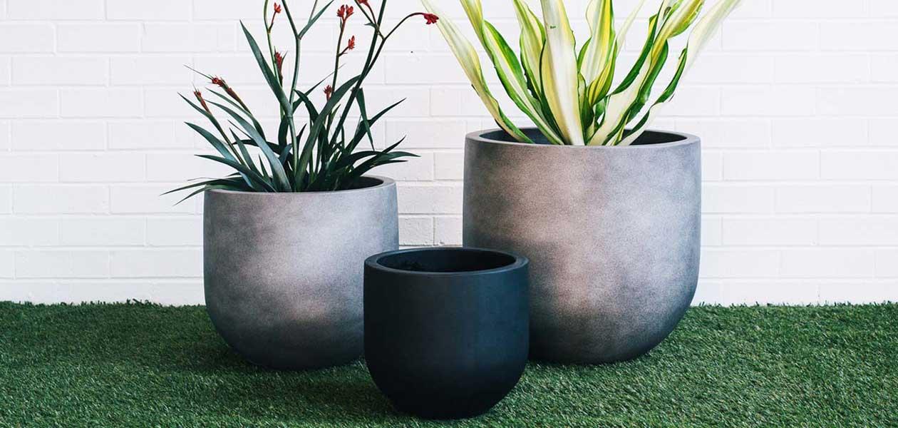 Designer Garden Pots
